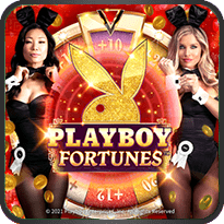 Playboy Fortunes ™