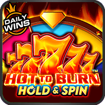 Hot to Burn Hold and Spin™