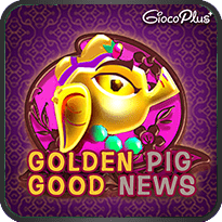 Golden Pig Good News